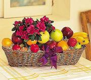 Angelos Fruit And Flower Assortment