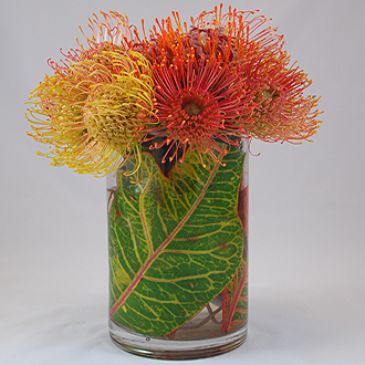Pincushion Protea Vase
