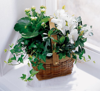 The FTD® White Assortment Basket
