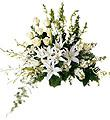 The FTD� Light In Your Honor� Arrangement