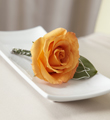 The FTD� New Sunrise� Boutonniere