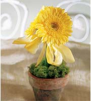 The FTD� Yellow Gerbera Centerpiece