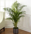 The FTD� Palm
