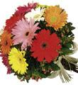 The FTD� Gerbera Bouquet