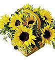 The FTD� Sunflower Basket
