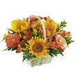 The FTD� Happy Blooms� Basket