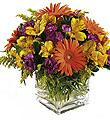 The FTD� Wonderful Wishes� Bouquet