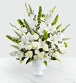 The FTD� Morning Stars� Arrangement