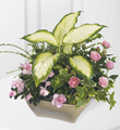 The FTD� Garden of Grace� Planter