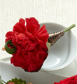 The FTD� Red Carnation Boutonniere