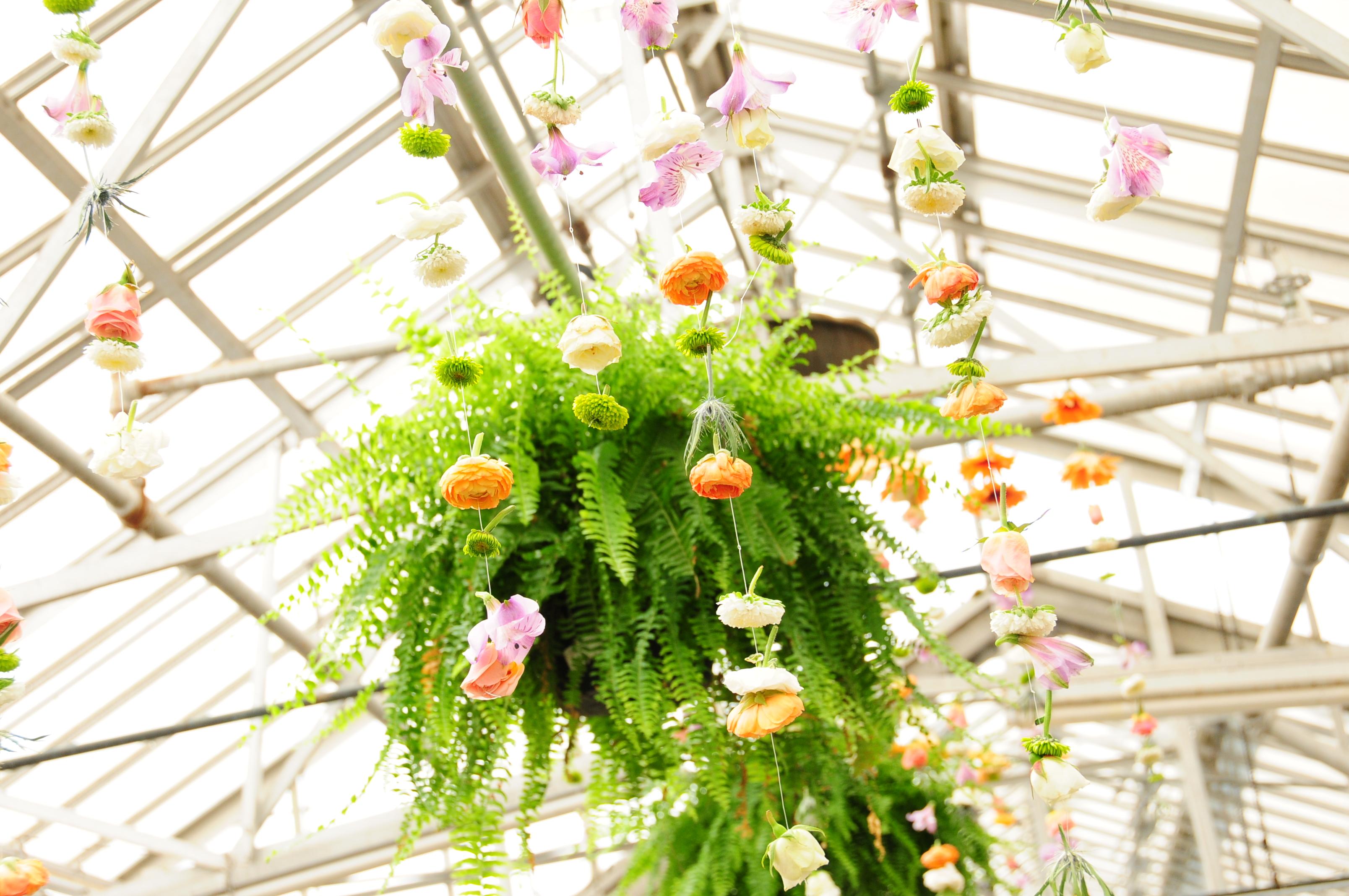 Piersons Flower Shop Greenhouses Inc Cedar Rapids Ia 52405 Ftd