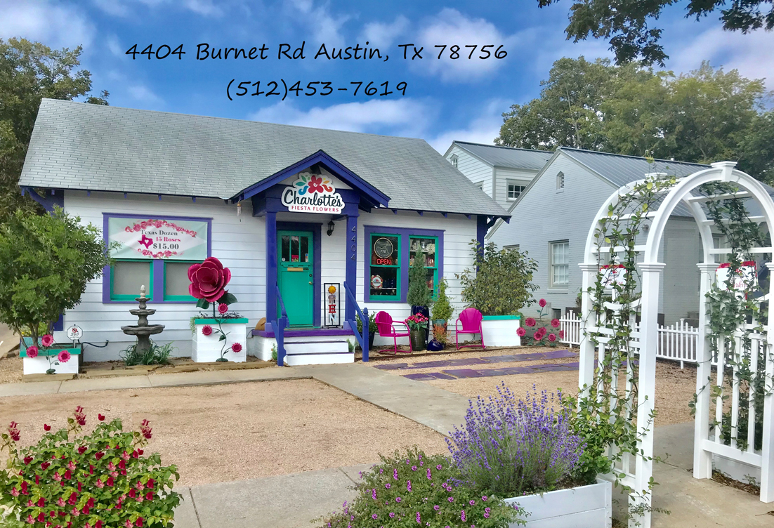 Charlottes fiesta flowers voted best florist in austin 5 years in a call to place your flower order and we will add 50 more flowers to your order izmirmasajfo